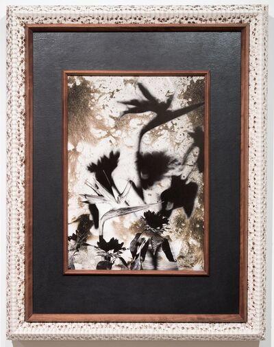 Birdhead, 'Today, 2004-8', 2014