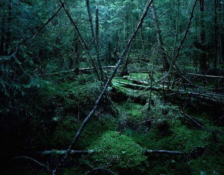 Mikael LAFONTAN, 'Suede Hindas', 2014