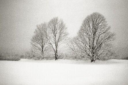 Priscilla Rattazzi, 'Three Lindens in a Snowstorm, East Hampton', 1996