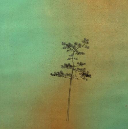 Zhu Jianzhong, 'Pine', 2014