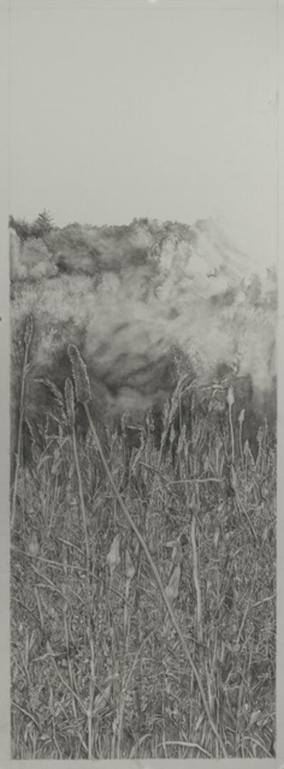 Amanda Besl, 'Diana's Field 4', 2018