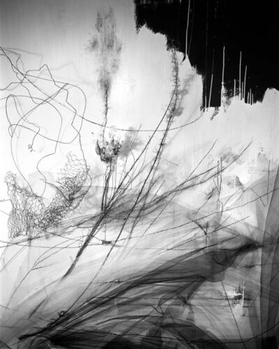Lauren Semivan, 'Pendulum ', 2015