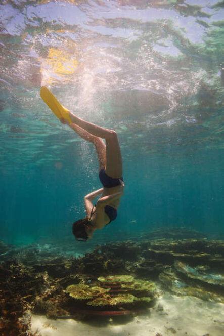 Bruno Poinsard, 'The diver', 2016