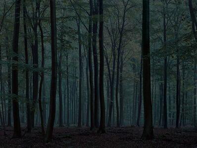 Michael Lange, 'WALD   Landscapes of Memory#0172', 2009
