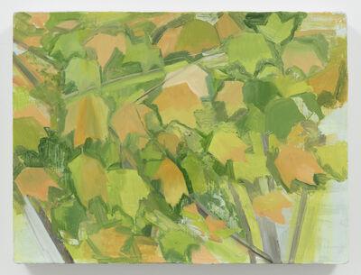 Sylvia Plimack Mangold, 'Fall Maple Detail', 2014
