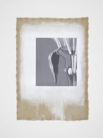 Linarejos Moreno, 'Organic Mechanism II', 2016