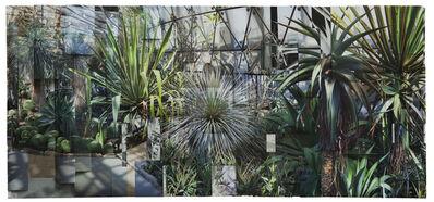 Ji Zhou, 'Greenhouses 2', 2017