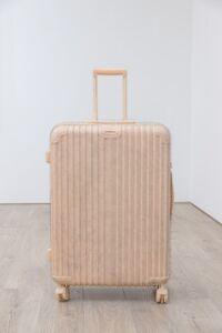 Wang Du 王度, 'Object No. 9 ', 2016
