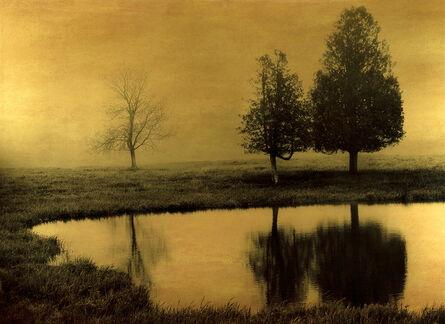 Joyce Tenneson, 'Rockport Tree Reflection'