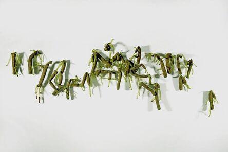 Lai Dieu Ha, 'Hydra Magnipapillata (LDH151001)', 2015
