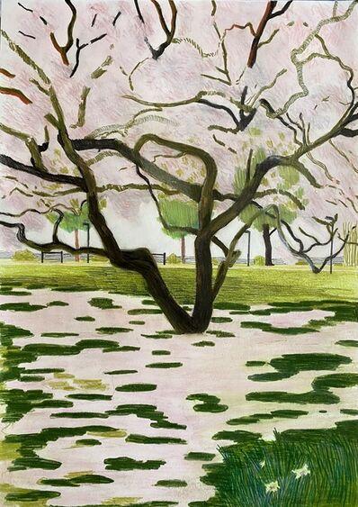 Per Adolfsen, 'Magnolia', 2021