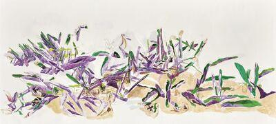 HALLEY CHENG 鄭哈雷, 'A Row of Plants Outside Mei Yin House, Shek Kip Mei Estate 石硤尾邨美賢樓對出一組植物', 2016