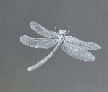 Chen I-Chun, 'A Flying Backwards Dragon Fly', 2018