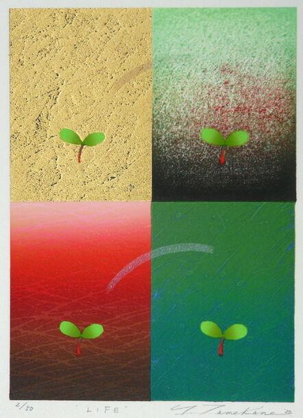 Yoshikatsu Tamekane, 'Life', 2020
