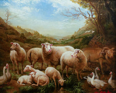 Yana Movchan, 'Sheep in the Meadow', 2015
