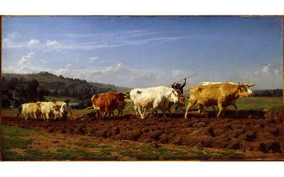 Rosa Bonheur, 'Plowing at Nivernais', 1850