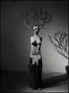 Dietrich Klinge, 'Daphne VIII', 2017