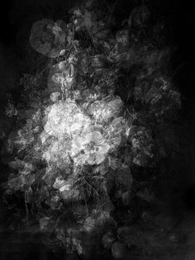 Kim Boske, 'Bouquets from the golden age (B/W)', 2015