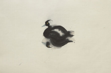 Claire Harkess, 'Tufted Duck', 2020