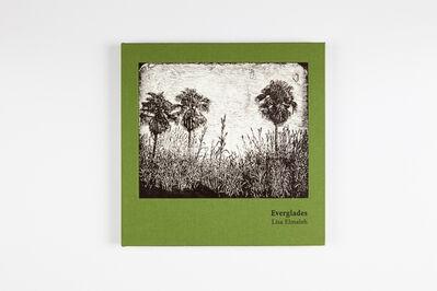 Lisa Elmaleh, 'Everglades', 2016