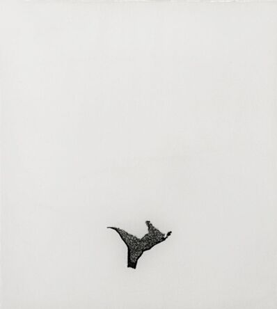 Barbara Salvucci, 'Incanto nero', 2009