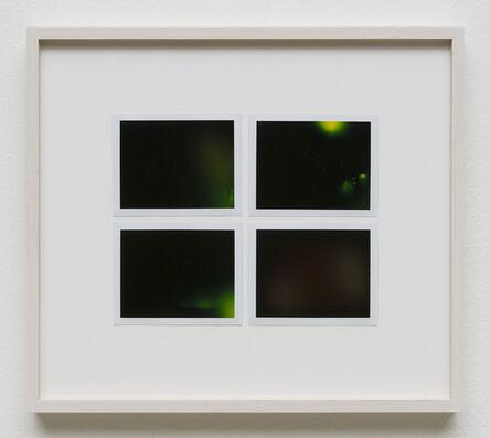 Peter Miller, 'Photuris #29', 2013
