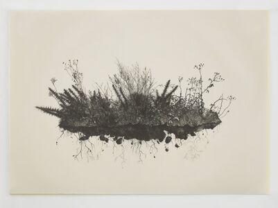 Miriam de Búrca, 'Anatomy of Chaos I: What Remains?', 2018