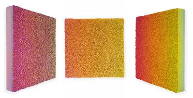 Zhuang Hong Yi, 'Flowerbed Colour Change #S2031', 2020