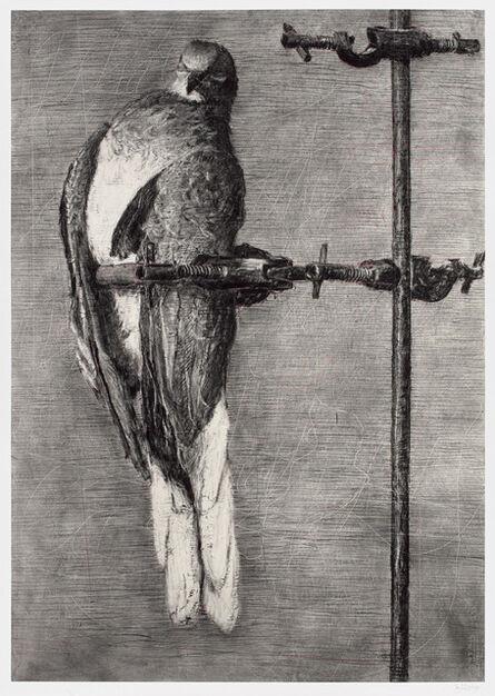 William Kentridge, 'Bird Catcher', 2006