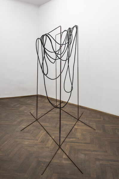 Iza Tarasewicz, 'EVENTS WITHIN A FIELD', 2015