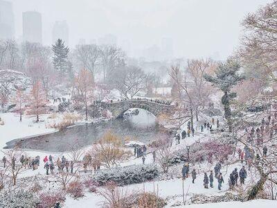 David Burdeny, 'December Snow, Central Park, New York City, NY', 2017