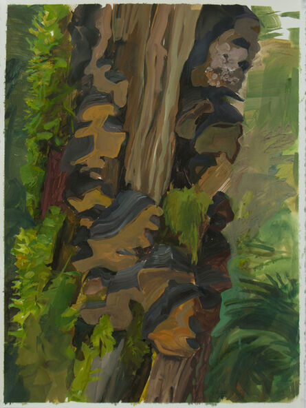 Kristin Musgnug, 'Snag with Bracket Fungi', 2015