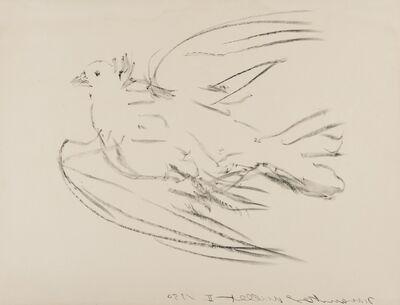 Pablo Picasso, 'La Colombe volant (Bloch 677; Mourlot 191) ', 1950