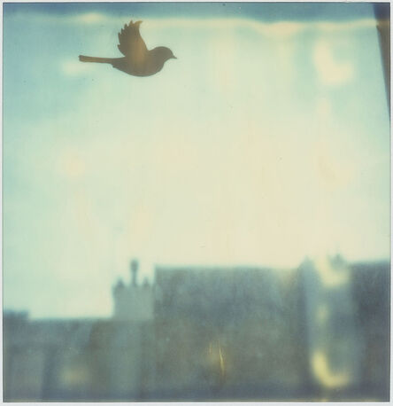 Marion Lanciaux, 'Toujours - Contemporary, Conceptual, Women, Polaroid, 21st Century, Cityscape, Bird', 2009