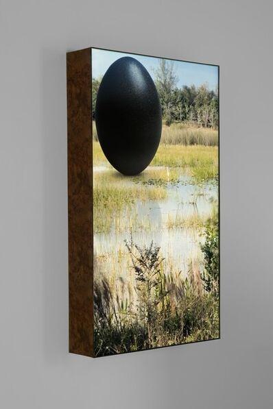 Rachel Rose, 'Everglades Egret', 2020