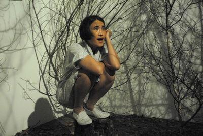 Duan Yingmei, 'Happy Yingmei', 2011