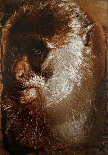 James Griffith, 'Capuchin Monkey', 2017