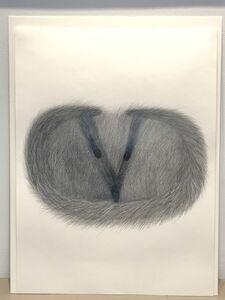 """Margarita Gluzberg, '""""Valentino fox""""', 2000"""