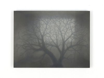 David Kowalski, 'Im Wald nach der Zeit VIII', 2020