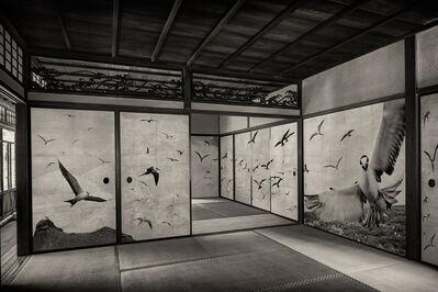 Kenji Wakasugi, 'Flock', 2016