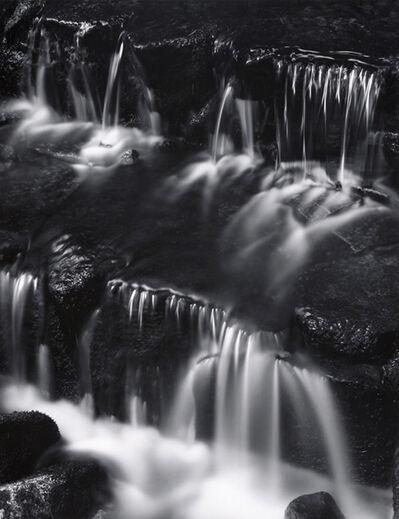 Ansel Adams, 'Fern Spring, Dusk, Yosemite Valley', 1961