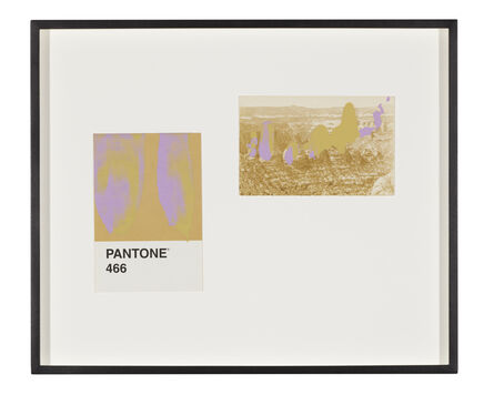 Tacita Dean, 'Pantone Pair (466)', 2019