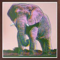 Andy Warhol, 'African Elephant', 1983