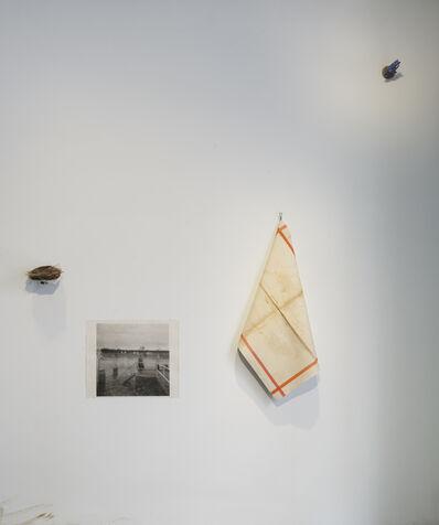Elena del Rivero, 'THE END OF THE WORLD. The Montana Nest', 2014-2019
