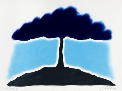 David Nash, 'Blue Shade', 2019