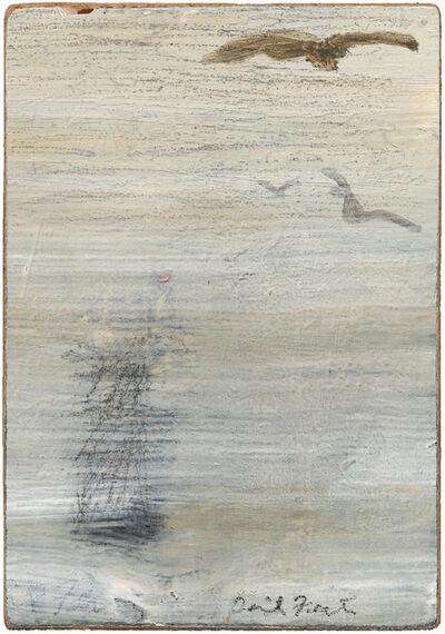 David Fertig, 'Skua', 2014