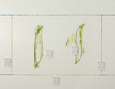 "Pádraig Timoney, ' ""Plant life Ad"" ', 2009"