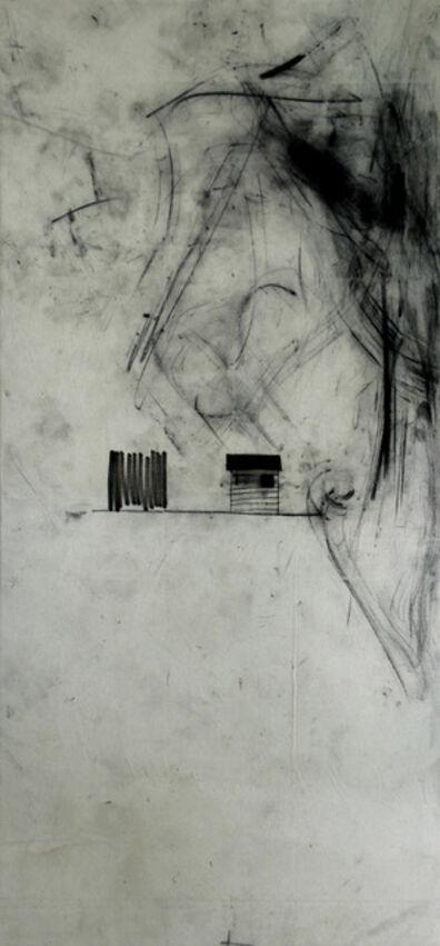 Gustavo Speridião, 'Série Vertical', 2010/2013