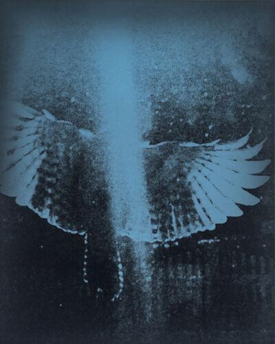 Wendy Small, 'Blue Birds 11', n/a