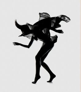Flóra Borsi, 'Des Monstres I', 2013